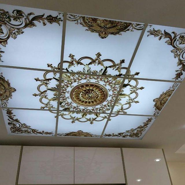orqanik asma tavan